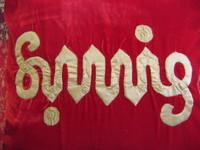 Sunnie_008