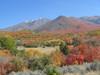 Autumn_003